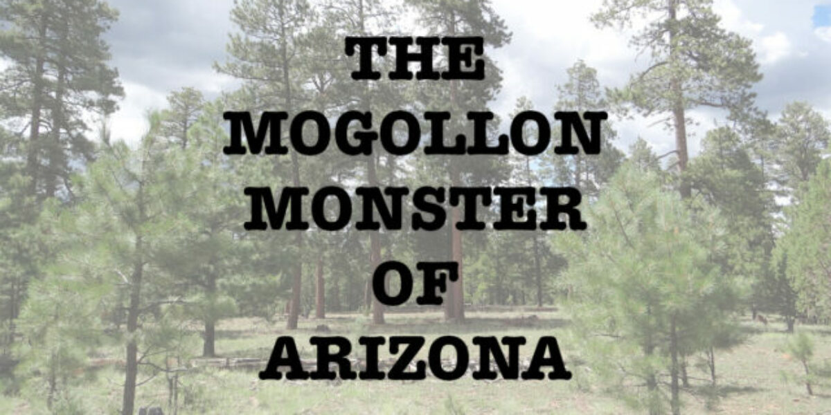 mogollon monster cover image