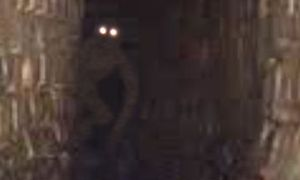 Photo of the Victorian Sewer creature