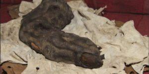 Egypt Giant Finger 04