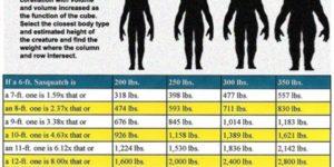 Bigfoot weight size chart