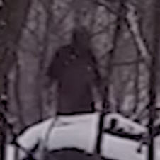 Possible Bigfoot Sighting in New Jersey