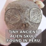 Tiny Alien Skull Found In Peru