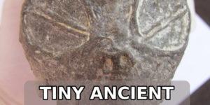 tiny ancient alien skull found in peru
