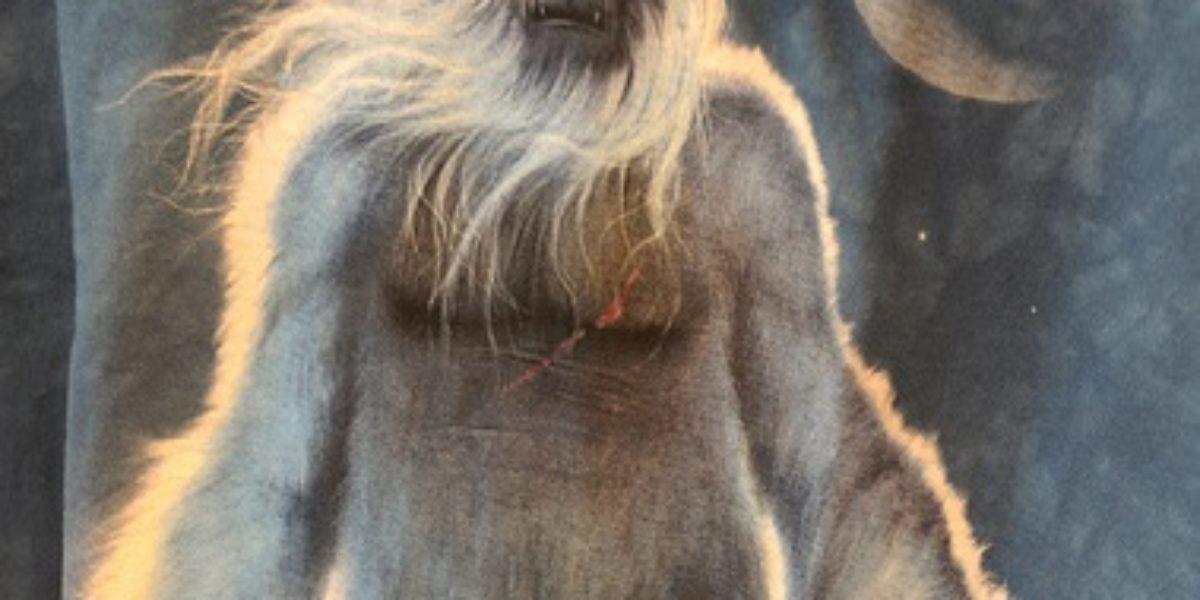 Albino Bigfoot