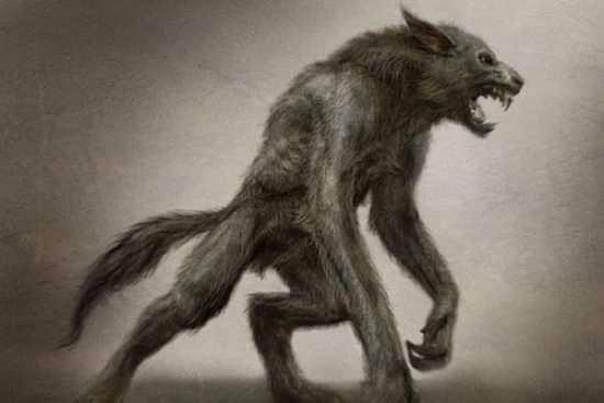 Dogman Drawing