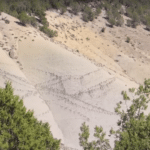 Bigfoot family sighting in Colorado