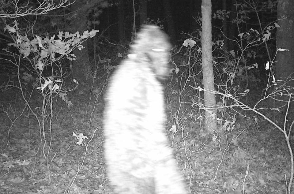 Macatawa Bigfoot photo