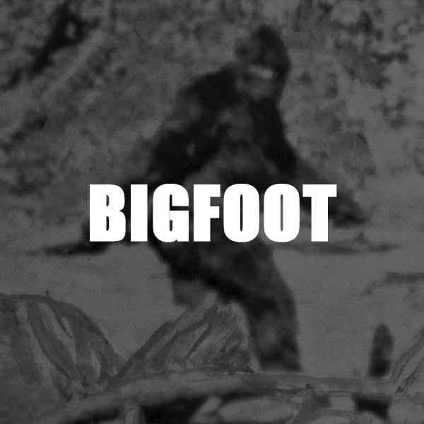 Articles about Bigfoot, Sasquatch and Swamp Apes